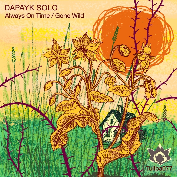 DAPAYK SOLO - Always On Time