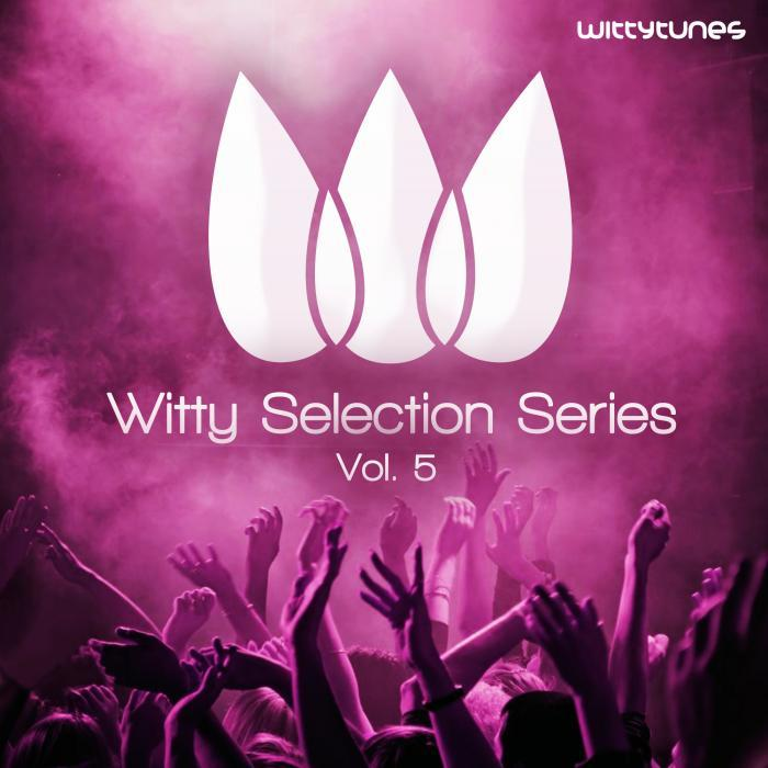 VARIOUS - Witty Selection Series Vol 5