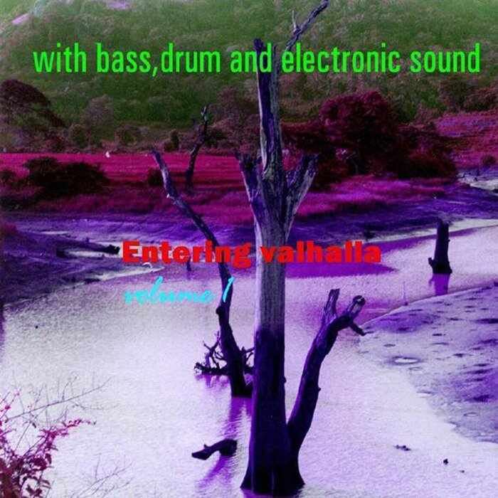 VARIOUS - Entering Valhalla Vol 1 With Bass Drum & Electronic Sound