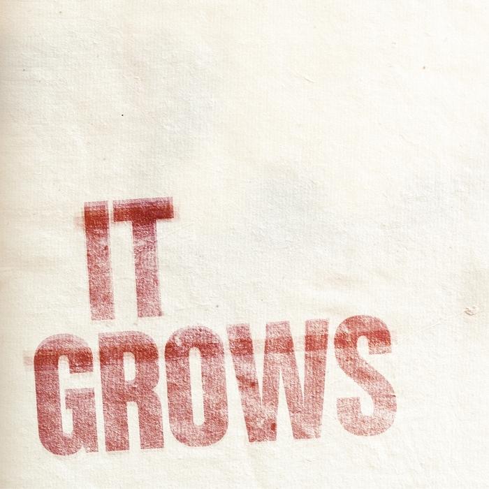 WHYT NOYZ - It Grows EP