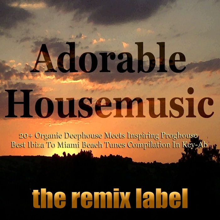 VARIOUS - Adorable Housemusic: Organic Deephouse Meets Inspiring Proghouse (Best Ibiza To Hot Miami Beach Tunes Compilation In Key Ab)