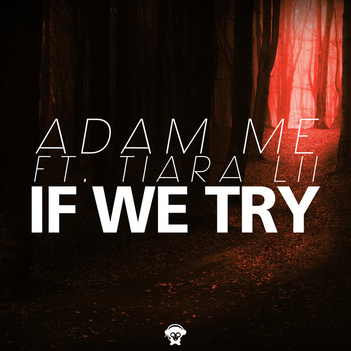 ADAM ME feat TIARA LII - If We Try