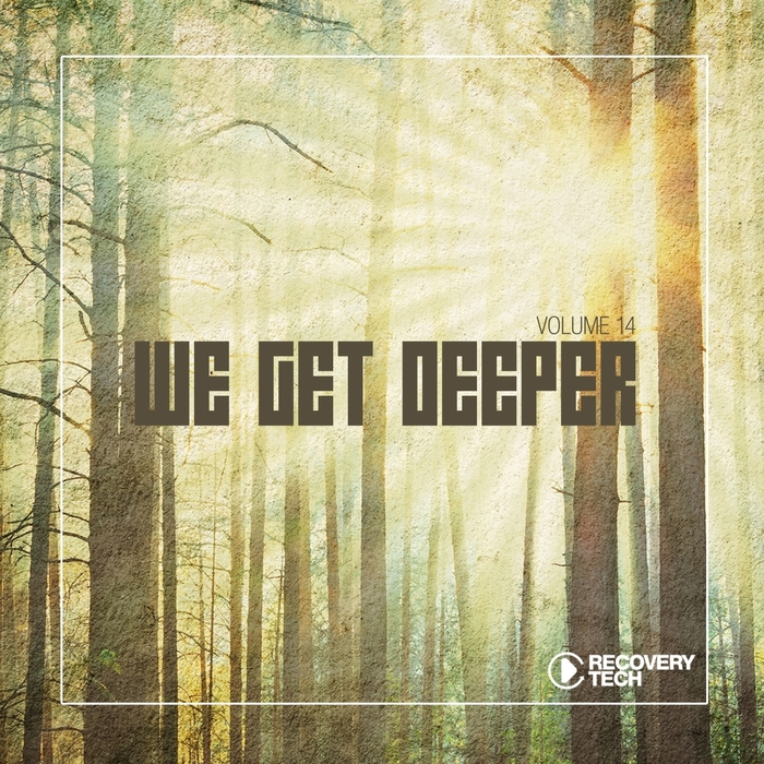 VARIOUS - We Get Deeper Vol 14