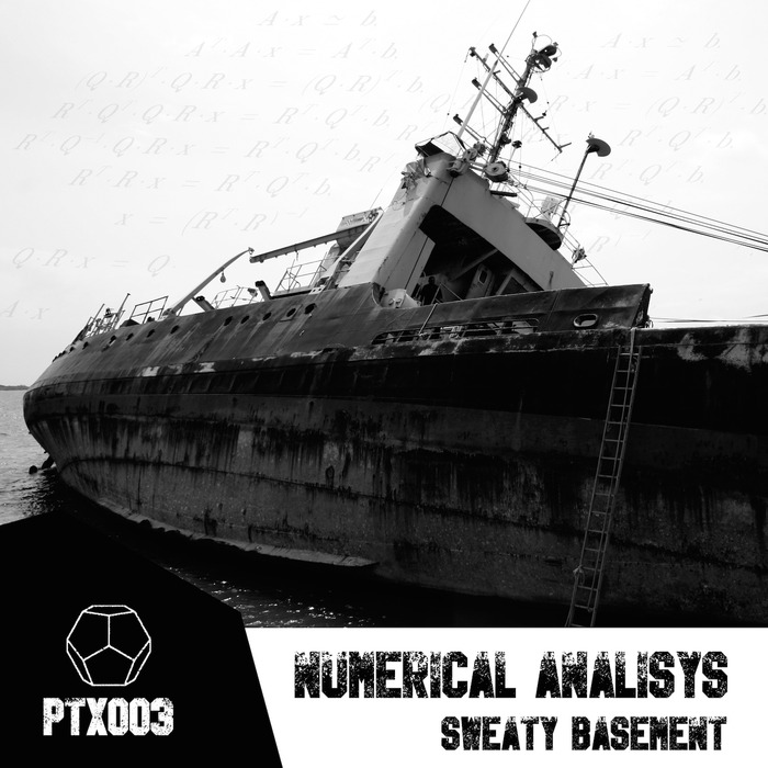 SWEATY BASEMENT - Numerical Analysis