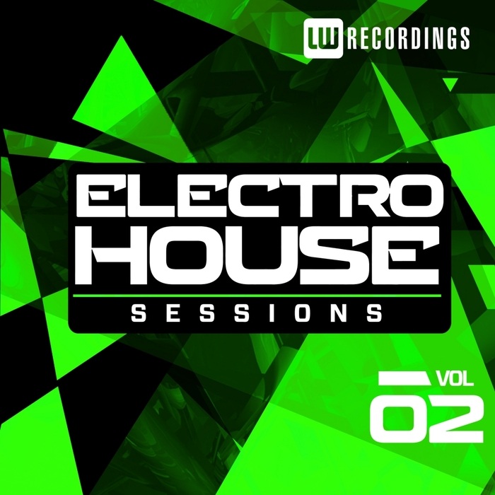 VARIOUS - Electro House Sessions Vol 2
