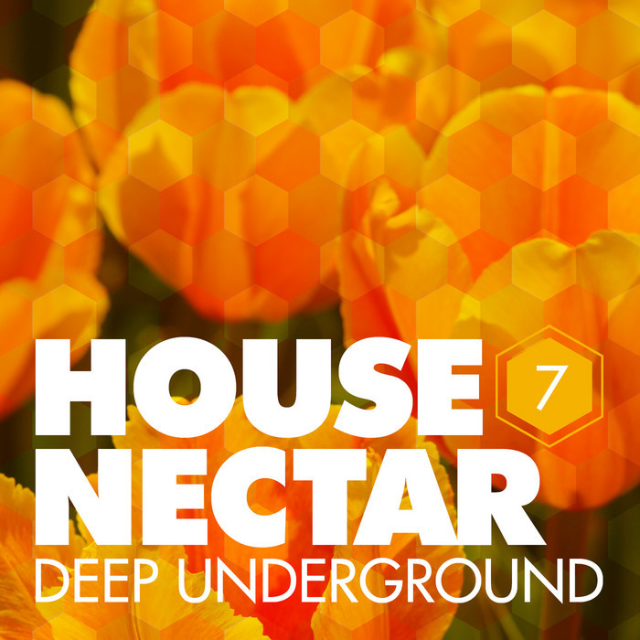 VARIOUS - Underground House Nectar Vol 7