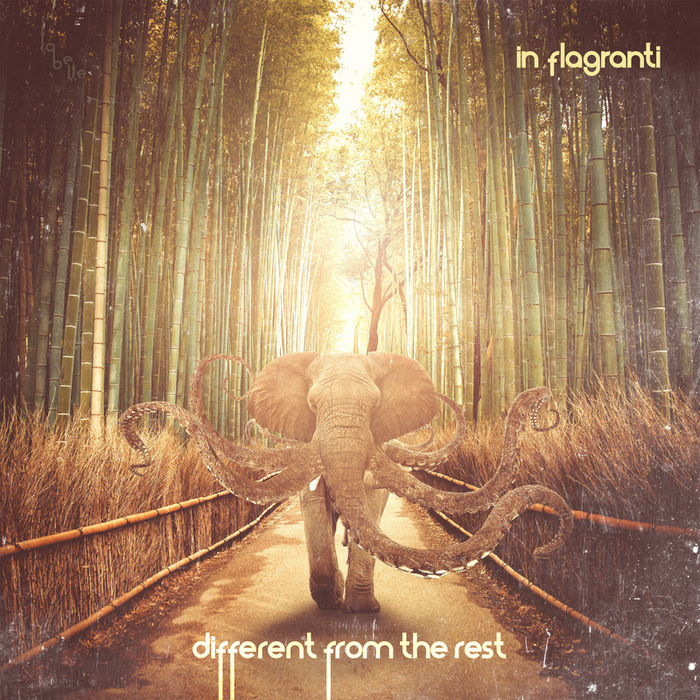 IN FLAGRANTI - Different From The Rest EP