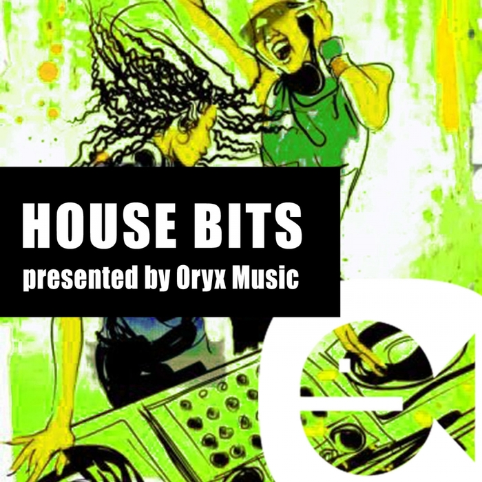 VARIOUS - Best Of House Bits 22