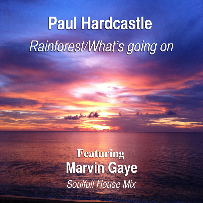 PAUL HARDCASTLE feat MARVIN GAYE - Rainforest: What's Going On