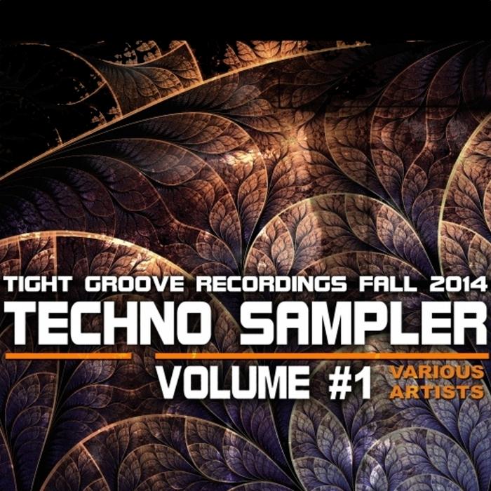 VARIOUS - Techno Sampler Vol 1