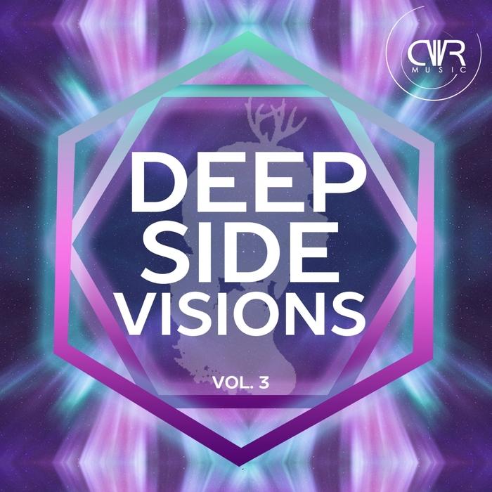 VARIOUS - Deep Side Visions Vol 3