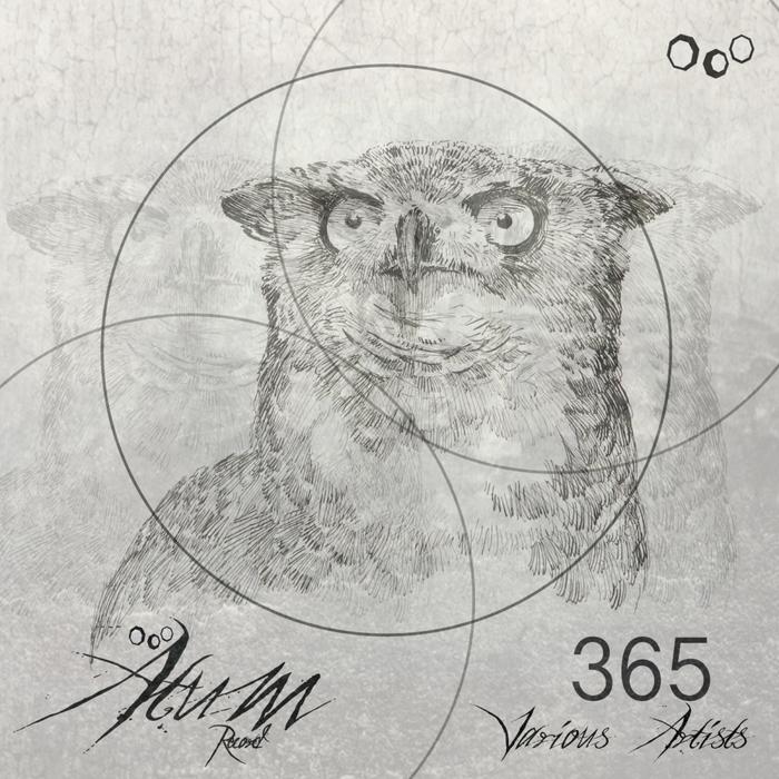 VARIOUS - 365