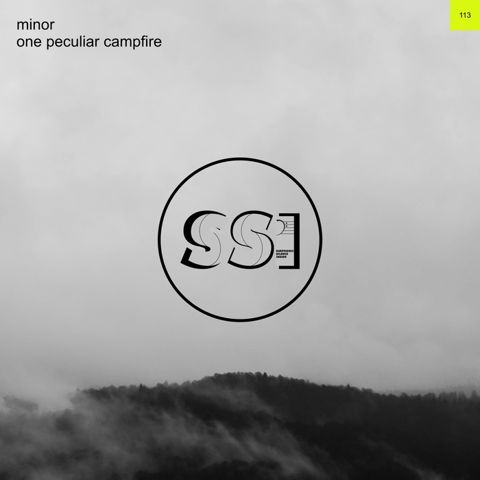 MINOR - One Peculiar Campfire