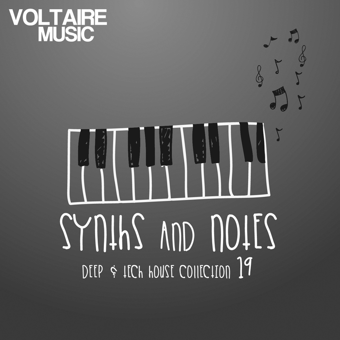 VARIOUS - Synths & Notes 19