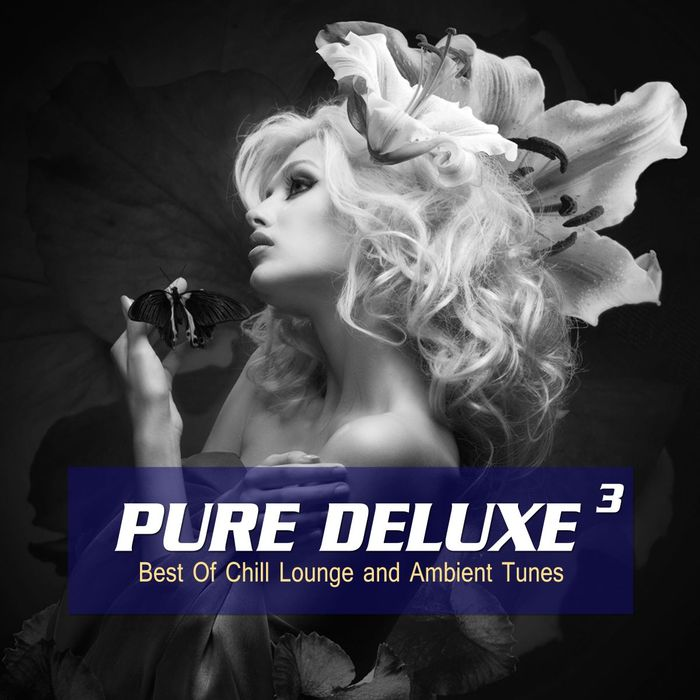 VARIOUS - Pure Deluxe Vol 3 (Best Of Chill Lounge And Ambient Tunes)