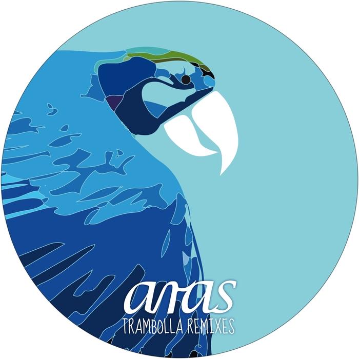 GALLUZZI, Andre/DANA RUH - Trambolla Remixes