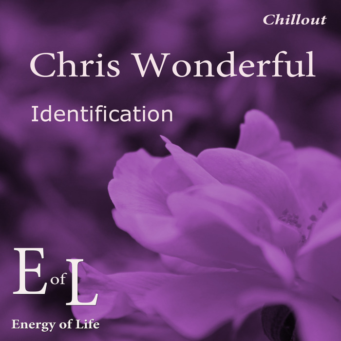 CHRIS WONDERFUL - Identification
