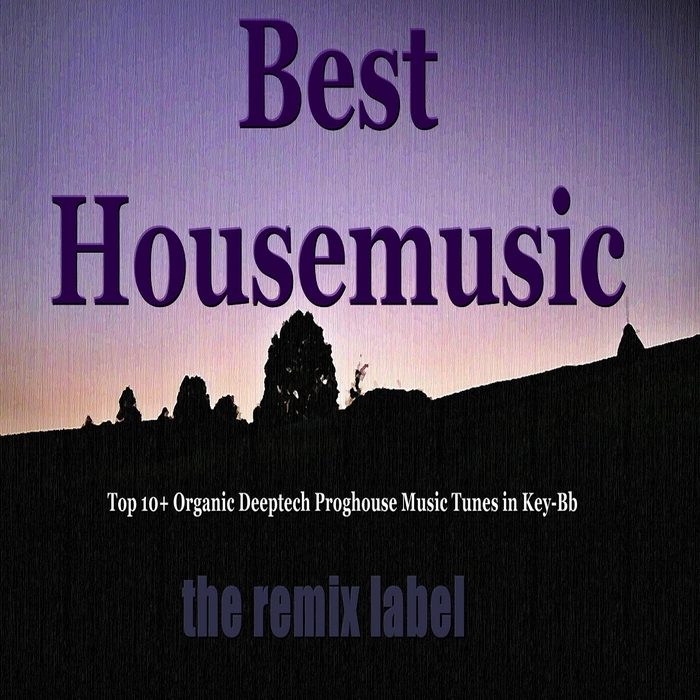 PADURARU, Cristian/VARIOUS - Best Housemusic: Top 10+ Organic Deeptech Proghouse Music Tunes In Key Bb (from balearic ibiza to hot miami beach tunes album compilation & the paduraru megamix)