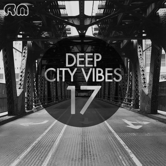 VARIOUS - Deep City Vibes Vol 17