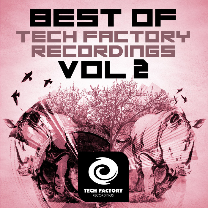 VARIOUS - Best Of Tech Factory Recordings Vol 2