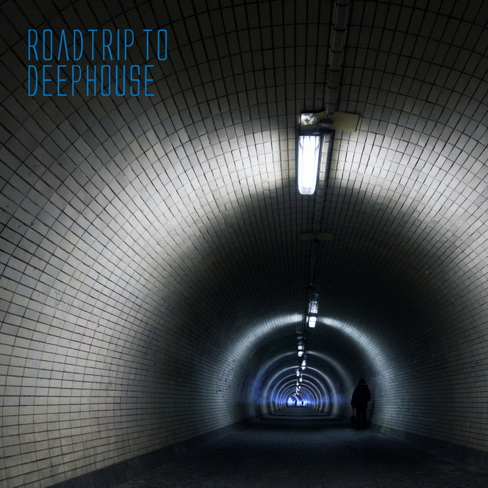 VARIOUS - Roadtrip To Deephouse