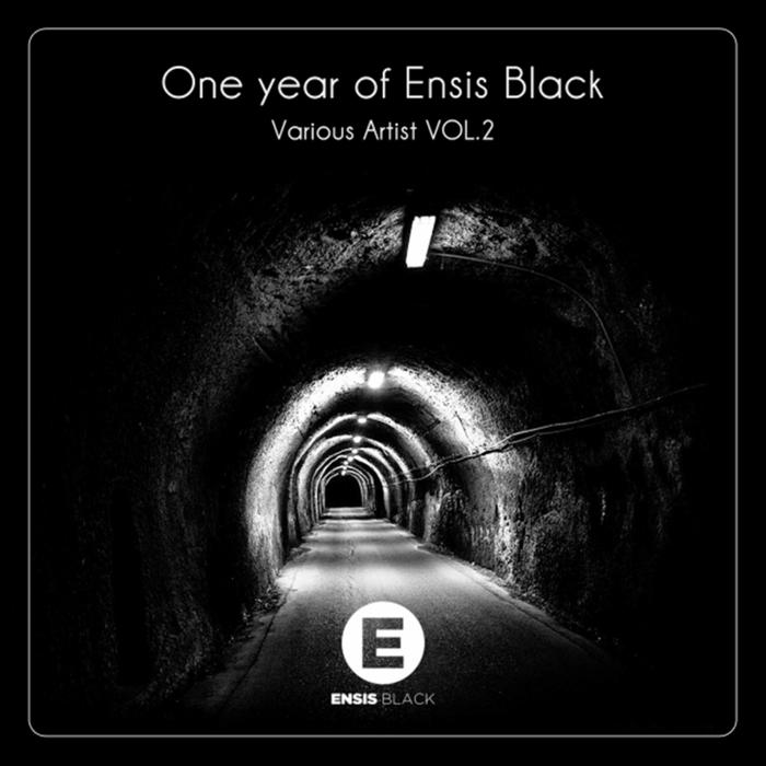 VARIOUS - One Year Of Ensis Black Vol 2