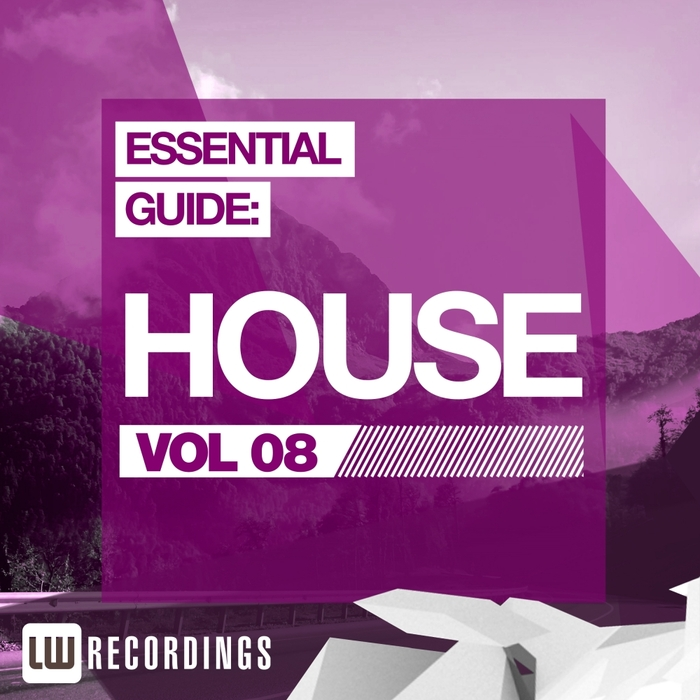 VARIOUS - Essential Guide House Vol 08