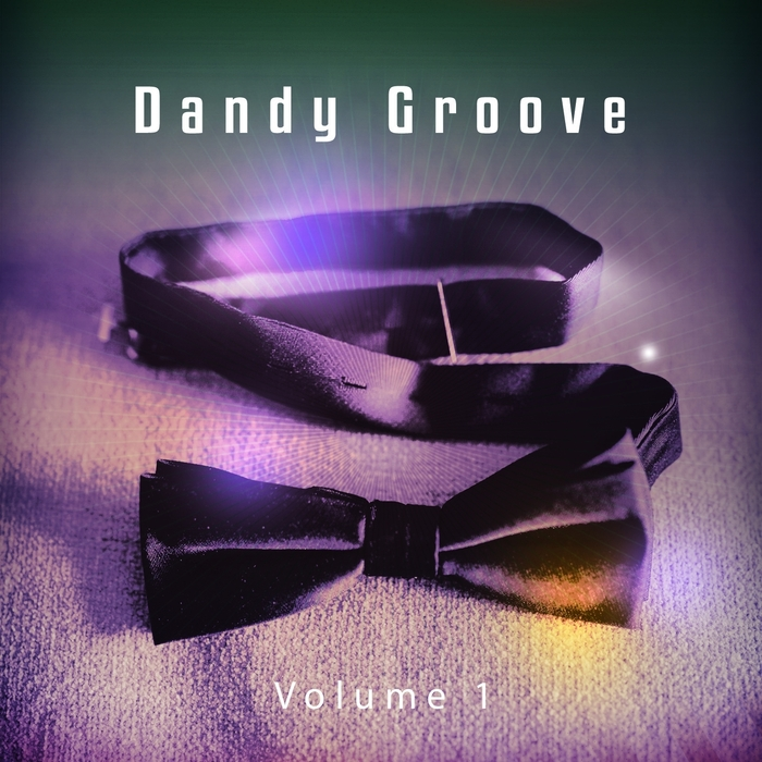 VARIOUS - Dandy Groove Vol 1 Stylish Chillhouse Tunes For Modern People