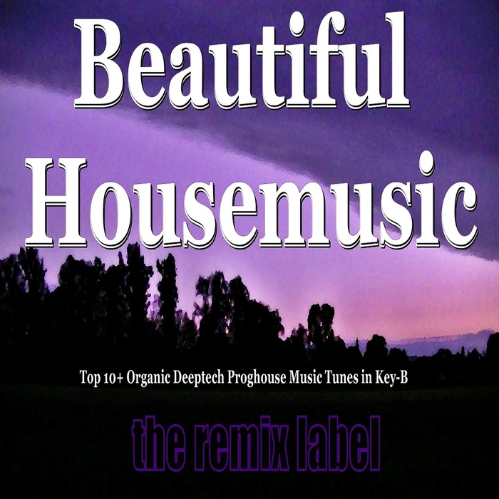 VARIOUS - Beautiful Housemusic (Vibrant Deephouse Sounds Meets Christmas Proghouse Music Tunes Compilation In Key B Plus The Paduraru Megamix)