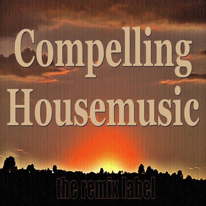 VARIOUS - Compelling Housemusic