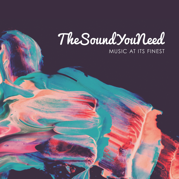 VARIOUS - TheSoundYouNeed Vol 1
