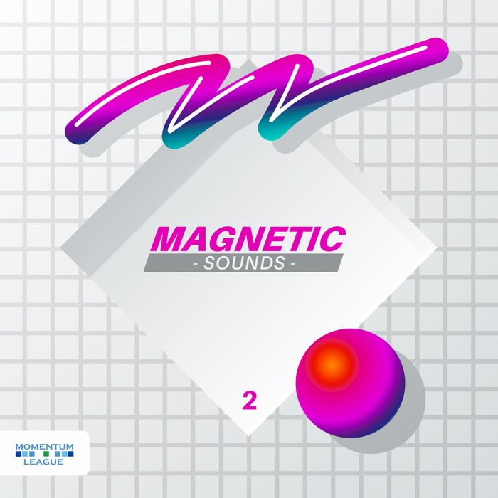VARIOUS - Magnetic Sounds Vol 2