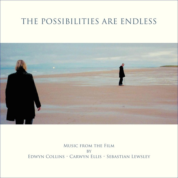 VARIOUS - The Possibilities Are Endless