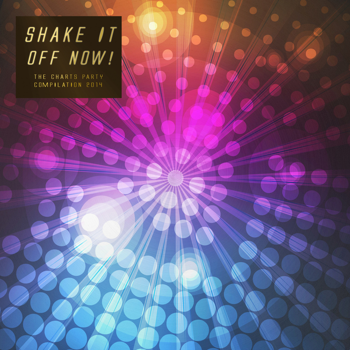 VARIOUS - Shake It Off Now! The Charts Party Compilation 2014