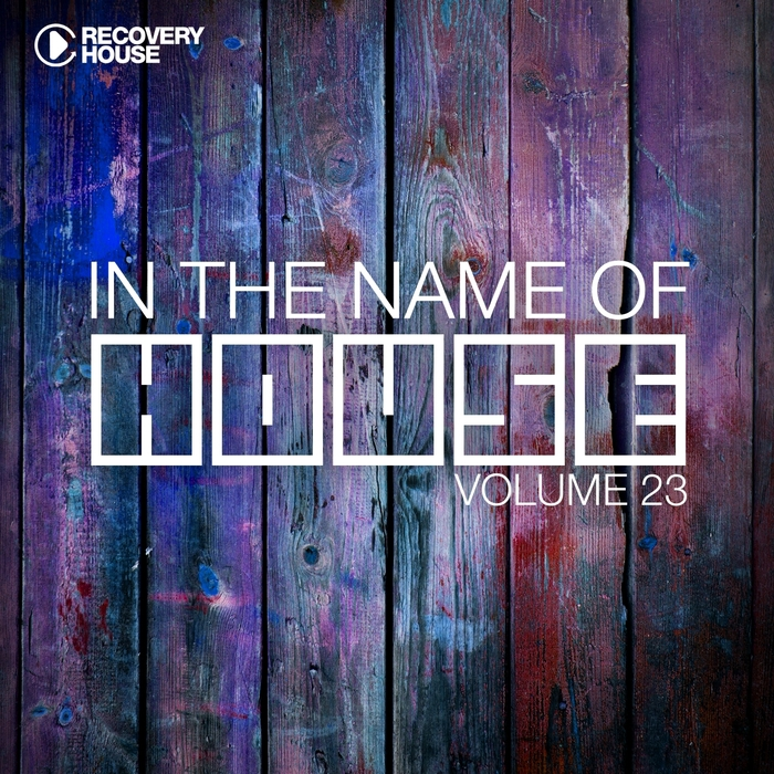 VARIOUS - In The Name Of House Vol 23