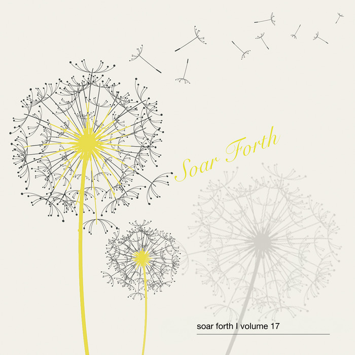 VARIOUS - Soar Forth Vol 17