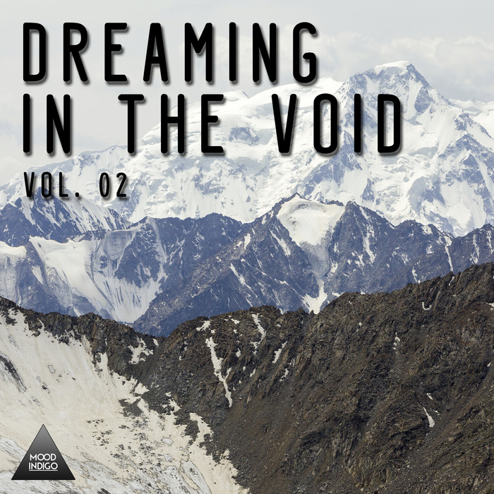 VARIOUS - Dreaming In The Void Vol 02