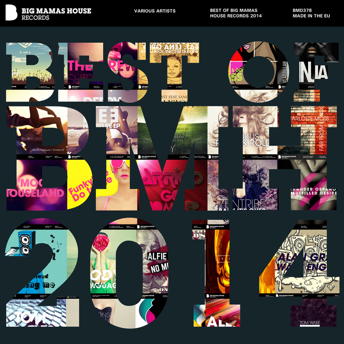 VARIOUS - Best Of Big Mamas House Records 2014