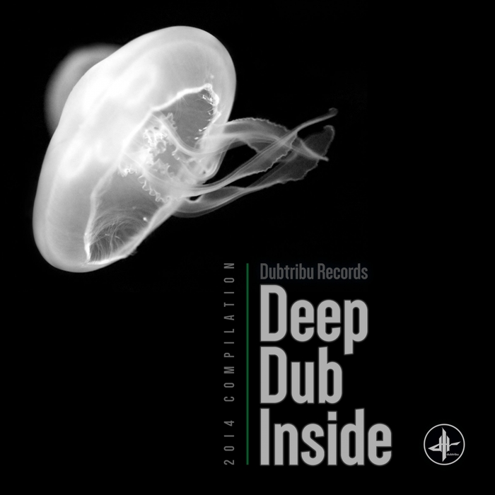 VARIOUS - Deep Dub Inside 2014