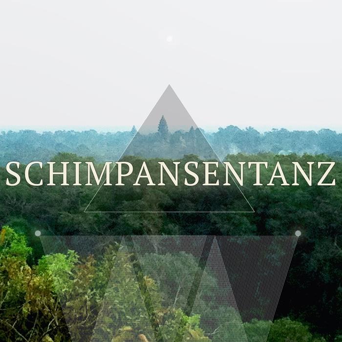 VARIOUS - Schimpansentanz Vol 1 (crazy deep house compilation)