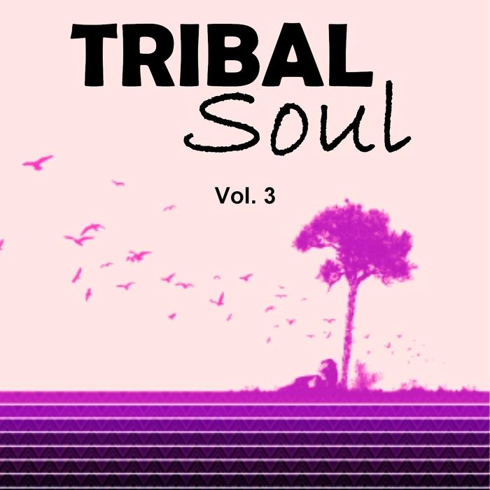 VARIOUS - Tribal Soul Vol 3