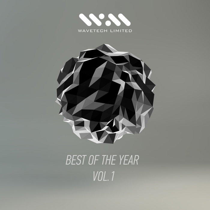 VARIOUS - Best Of The Year Vol 1