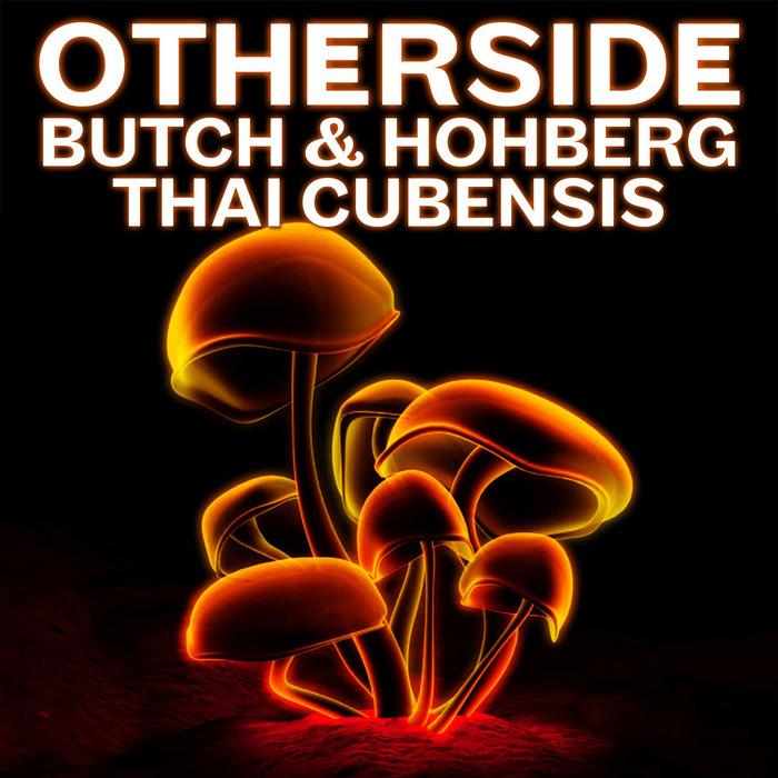 BUTCH & HOHBERG - Thai Cubensis