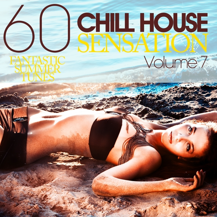 VARIOUS - Chill House Sensation Volume 7 60 Fantastic Summer Tunes