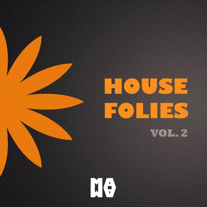VARIOUS - House Folies Volume 2