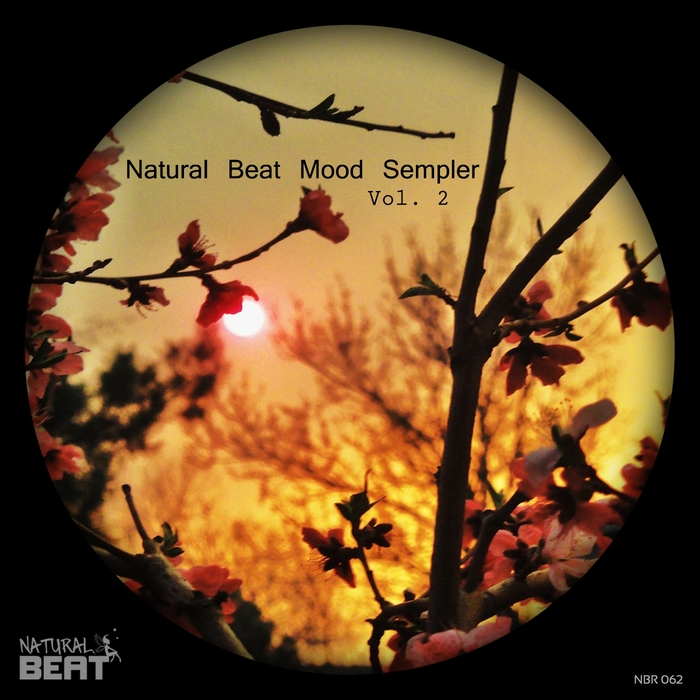 VARIOUS - Natural Beat Mood Sampler Vol 2