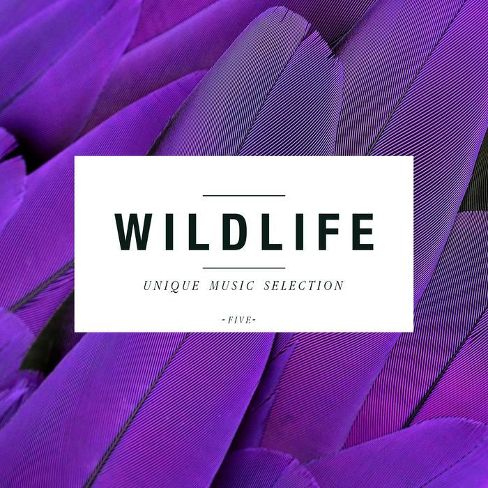 VARIOUS - Wildlife Volume 5