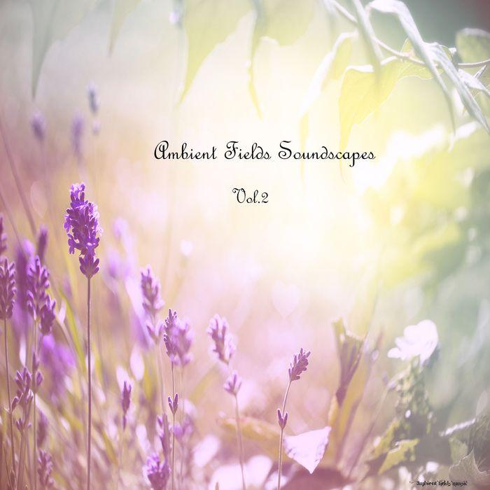VARIOUS - Ambient Fields Soundscapes Volume 2
