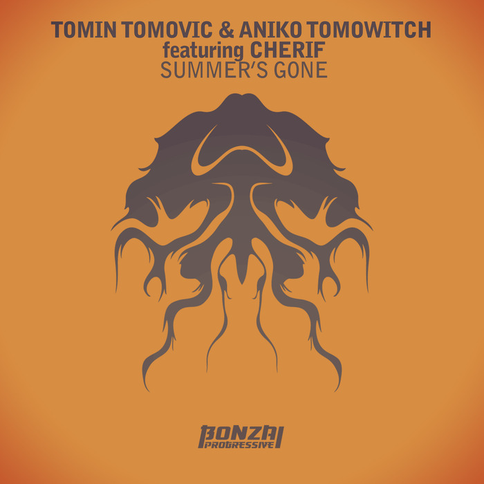 TOMOVIC, Tomin/ANIKO TOMOWITCH feat CHERIF - Summer's Gone