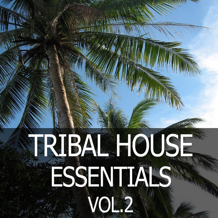 VARIOUS - Tribal House Essentials Vol 2